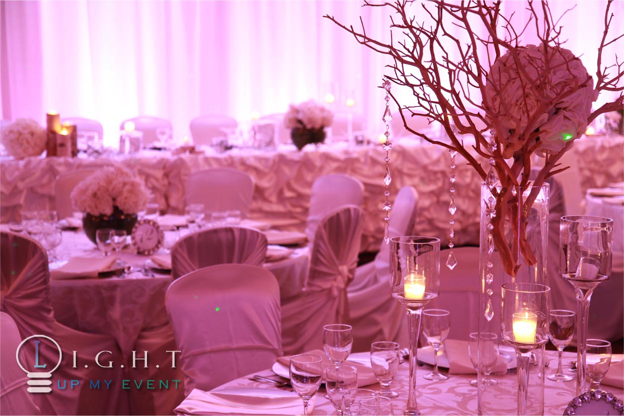 Michigan Wedding Lighting Company